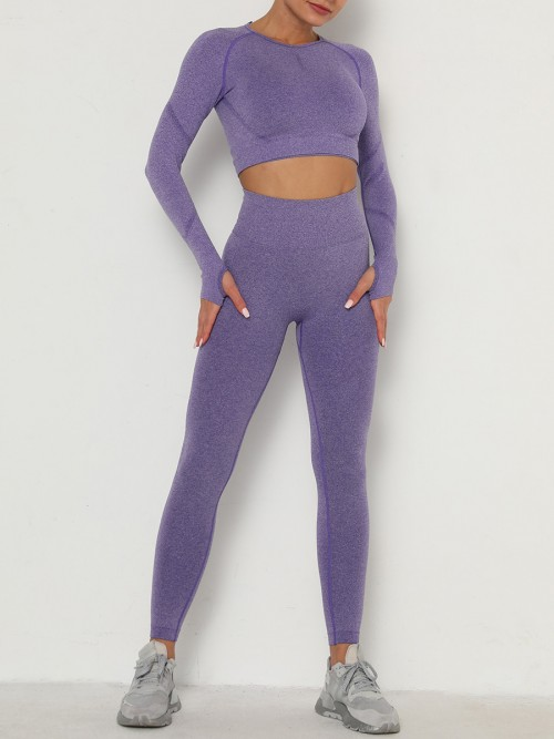 Entrancing Purple Running Suit Seamless Moisture-Wicking Workout