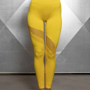 Sculpting Gold Exercise Legging Mesh Abdominal Control
