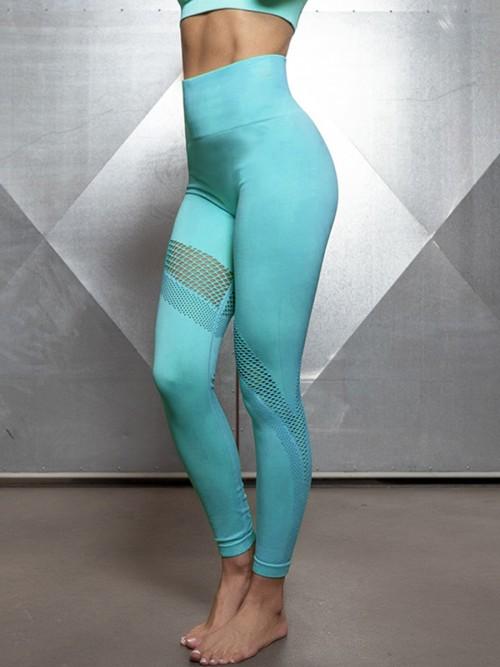 Sculpting Blue Exercise Legging Mesh Abdominal Control