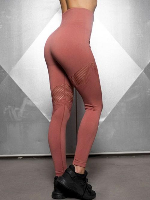 Sculpting Red Exercise Legging Mesh Abdominal Control