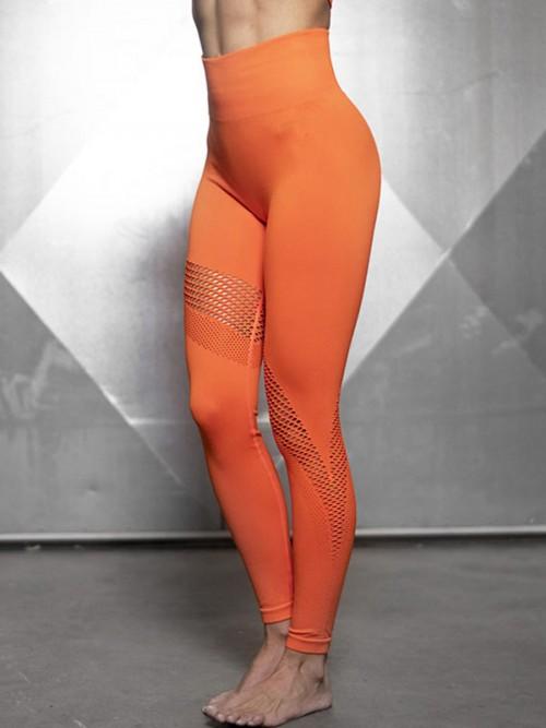 Sculpting Orange Exercise Legging Mesh Abdominal Control