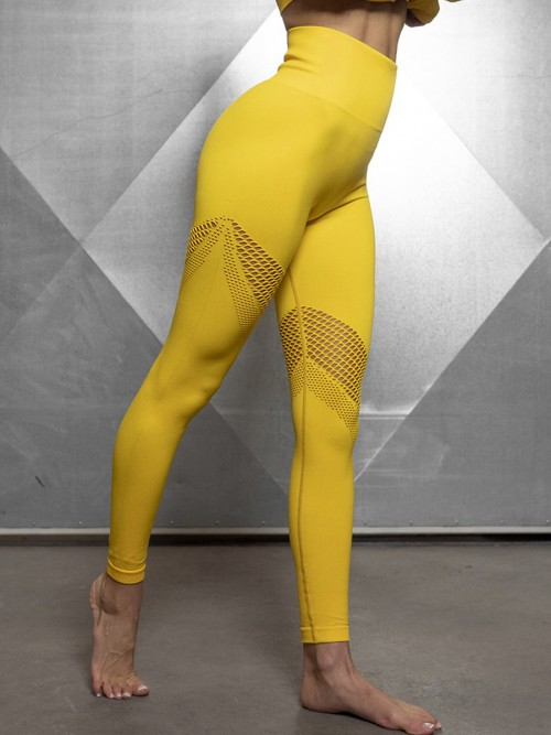Sculpting Gold Exercise Legging Mesh Abdominal Control