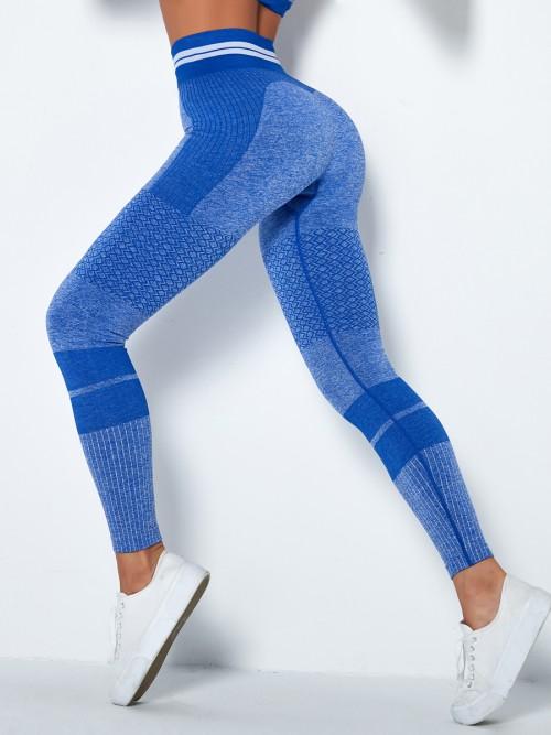 Stretchable Blue High Waist Yoga Leggings Seamless Tops For Women